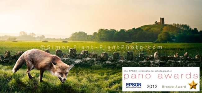 Pano-award-2012-fox